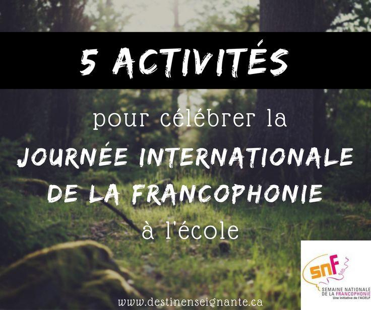 5 activités pour célébrer la journée internati…