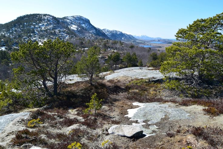 Hiking on Straumøya outside Bodø during spring