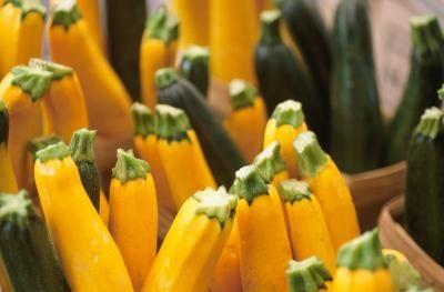 Condimentos para calabaza (squash) y zucchini  | LIVESTRONG.COM en Español