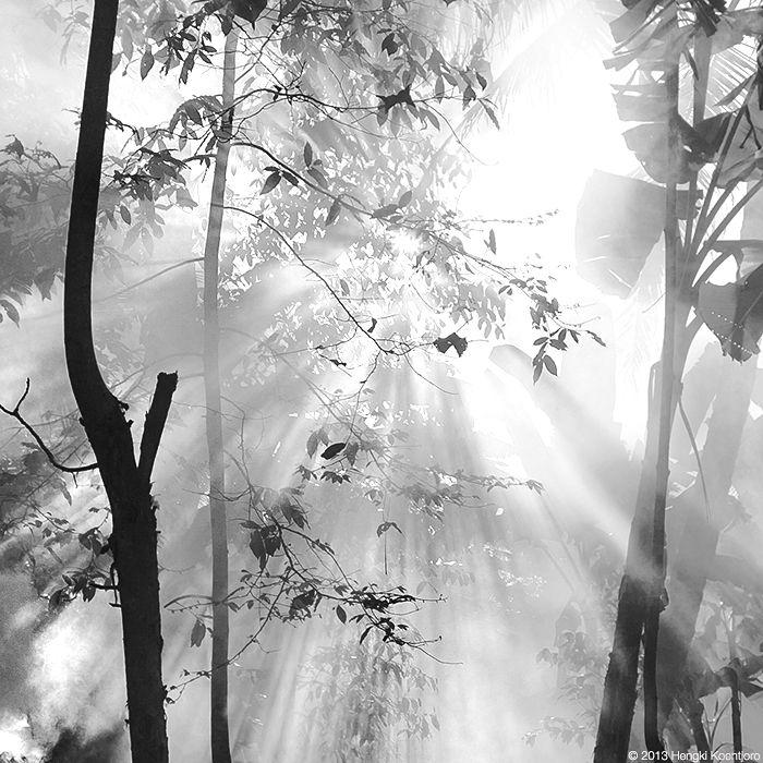 Shines, by Hengki Koentjoro
