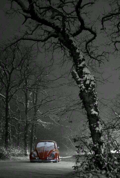 winter #VW