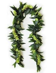 Maile Style Ti Leaf and Green Orchid Lei | Buy Graduation Leis