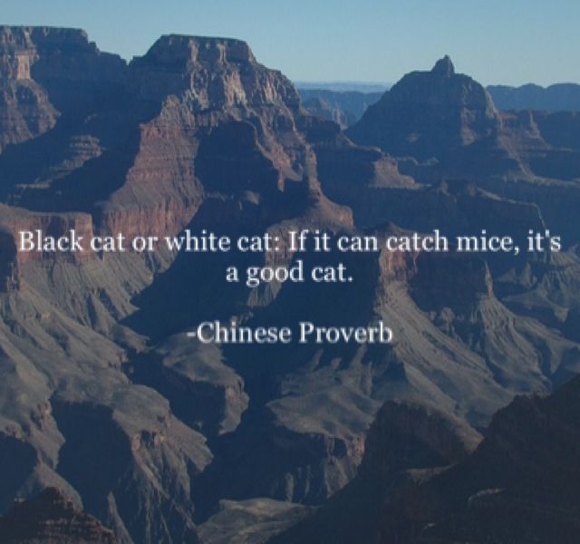 Black cat or white cat: If it can catch mice, it's a good cat. -Chinese Proverb