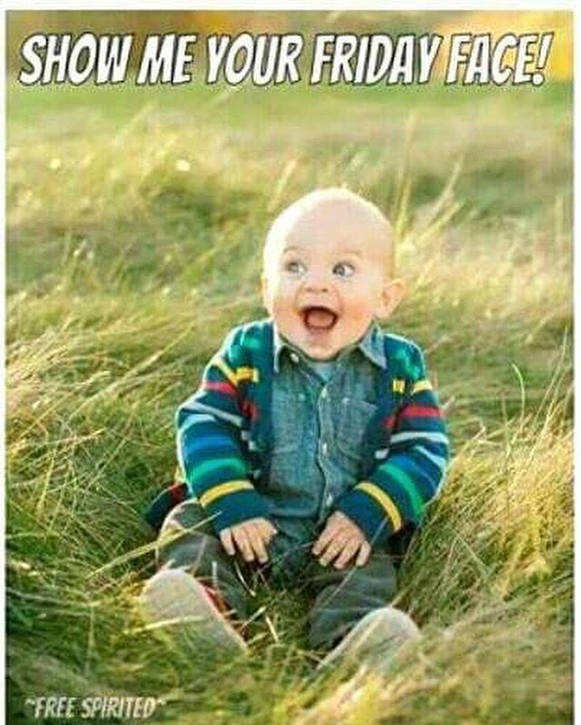 Friday … (With images) | Friday humor, Happy friday quotes ...