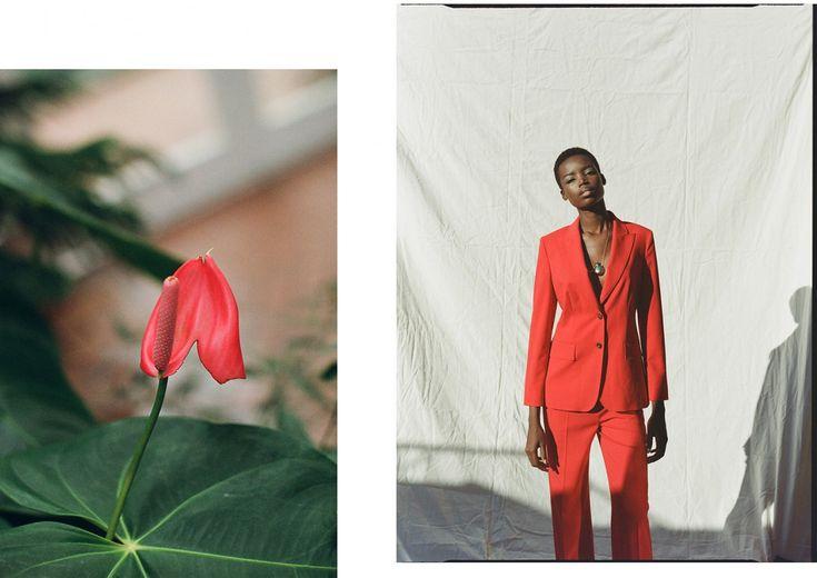 Gallery   Ben Morris Photography