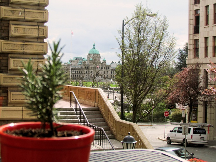 The view from the deck @Cichettibar    Is there a better view in Victoria BC?    http://magnoliahotel.com/dining/