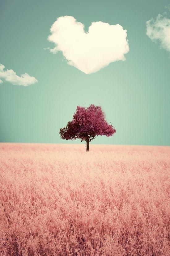 Surreal // lindo // árvore // paisagem // coração // rosa // céu