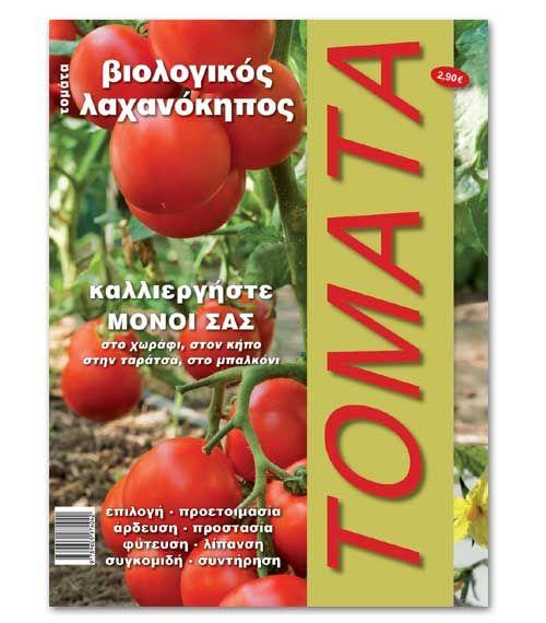 Βιολογικός λαχανόκηπος : Καλλιέργεια τομάτας