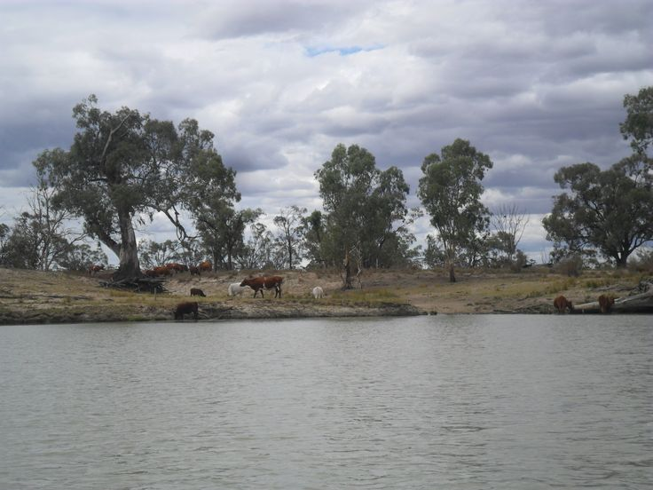 Waikerie, Murray River
