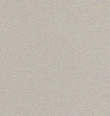 Dryvit Systems Inc 131 Gull Gray Close Up Jones