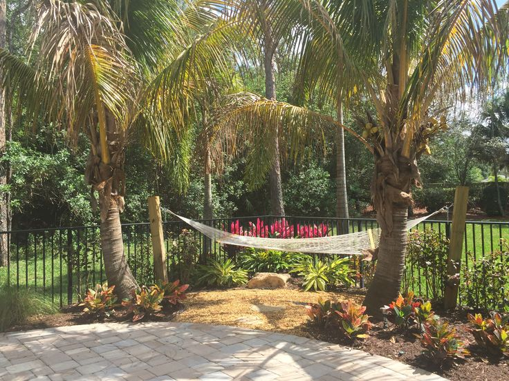 landscape design and design build company - Garden Design Tropical