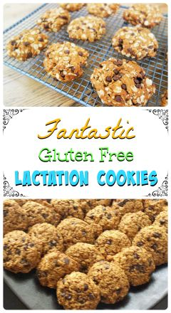 Fantastic gluten free lactation cookies recipe. For more great recipes, visit http://steel-cut-oats.com