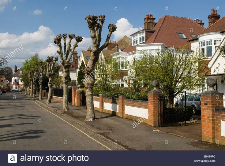Wimbledon Village Housing South west London SW19 London UK