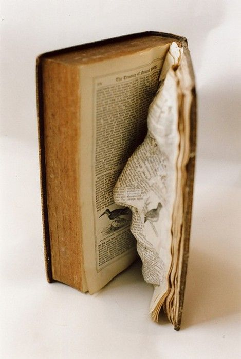 face in a book sculpture