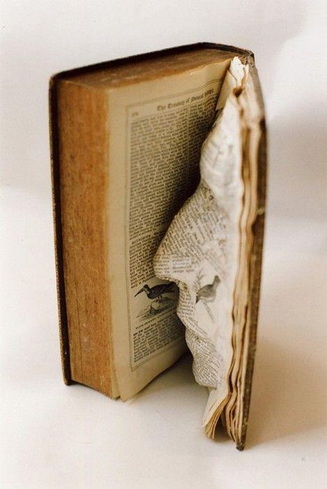 face in a book sculpture