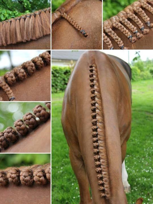 mooie knotjes :)