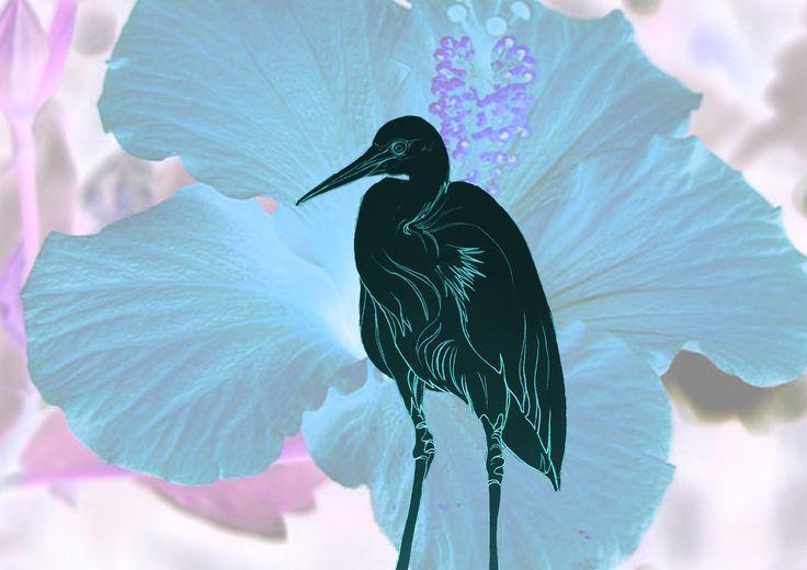 Heron on flower