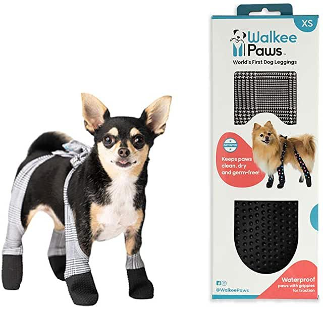 Amazon Com Pawz 10 50 3 Stars Up Boots Boots Paw Protectors Pet Supplies In 2020 Paw Protector Dog Clothes Patterns Pet Supplies