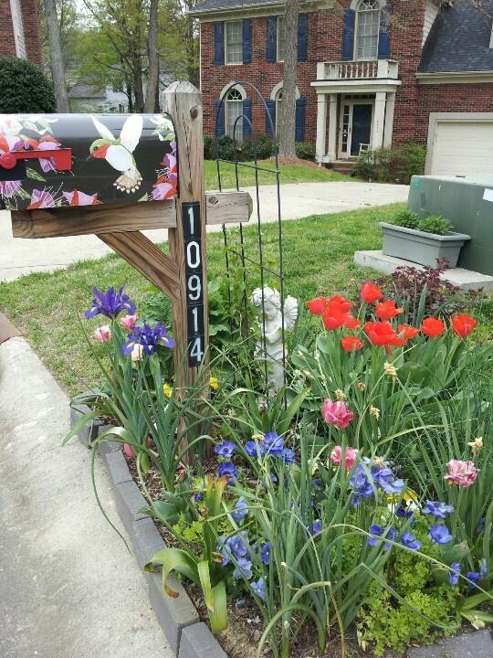 8 mailbox gardening