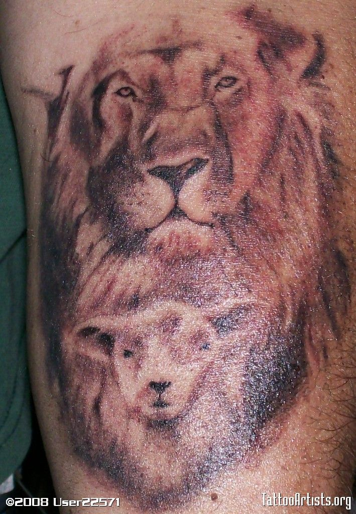 25  best ideas about lamb tattoo on pinterest