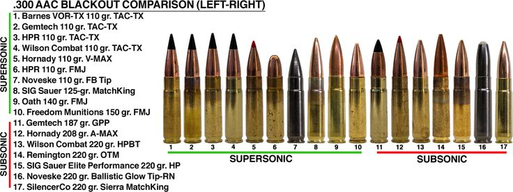 We tested 17 different types of subsonic and supersonic factory-loaded .300 AAC Blackout ammo to find out how they perform in short barreled AR-15s.