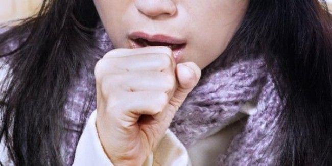 Kesehatan, Terpusat Media. Penyakit bronkitis muncul karena terjadi peradangan pada cabang batang tenggorokan (pipa bronchial) akibat adanya berbagai basil-basil yang bersarang di tenggorokan.