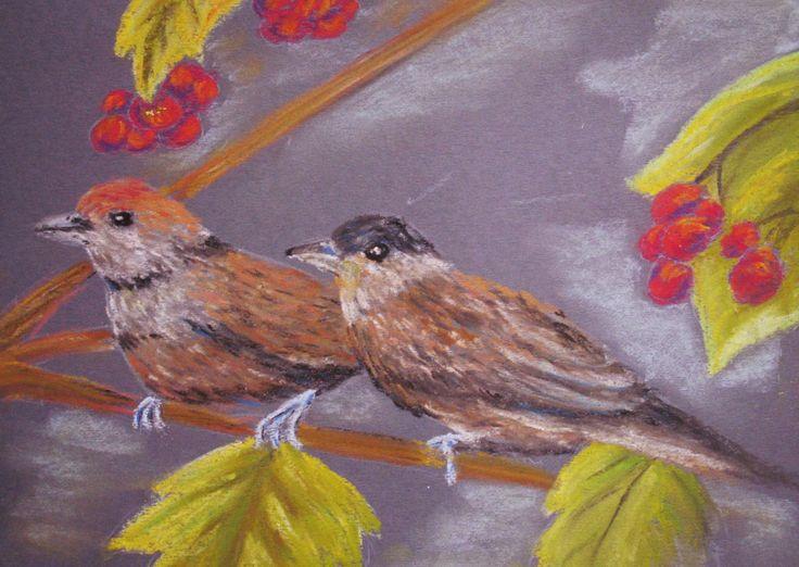 Galéria Kika: Vtáčiky / Birds