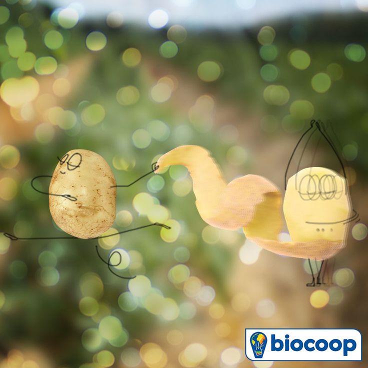 En janvier, on a la patate chez Biocoop !