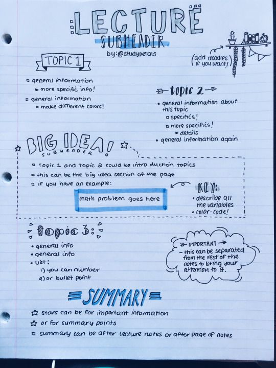 studypetals: made a layout of how i generally organize my notes! this is only one example; i have a lot of different layouts. this one is my most used, so i thought i'd share!