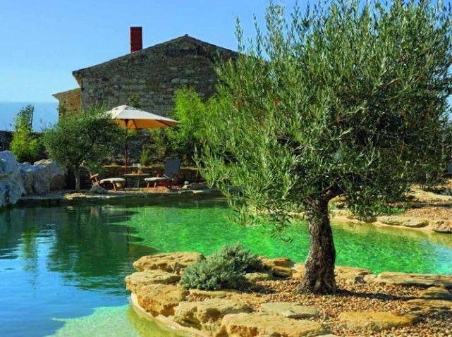 Les 25 meilleures id es de la cat gorie piscines for Combien coute une piscine naturelle