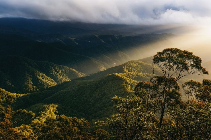 Moment of Light - Sunrise from Point Lookout in New England National Park, NSW Australia - Drew Hopper Photography