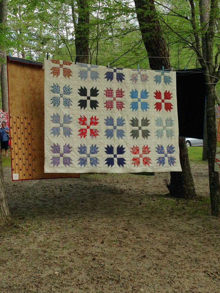 Bear Claw Quilt Kits For Sale