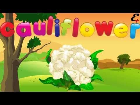 ▶ different types of vegetables learn vegetables name with image and name in animation video - YouTube