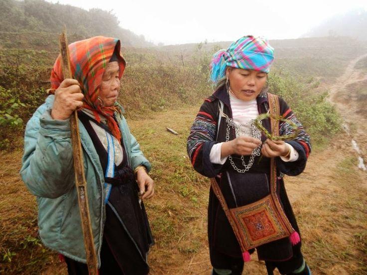Sapa, Wietnam, szlaki trekkingowe. Organizacja podróży i pobyt w miejscowych wioskach.