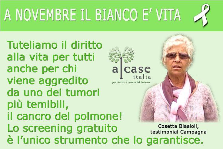 Gli obiettivi di Alcase Italia