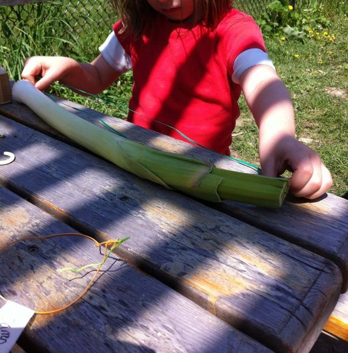 A Learning Story - measuring garden vegetables.