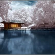 Tea house by the lake