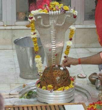 Nageshwar Jyoterling. Nageshwar