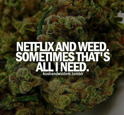 netflix and weed, sometimes that's all i need. / stay blazed