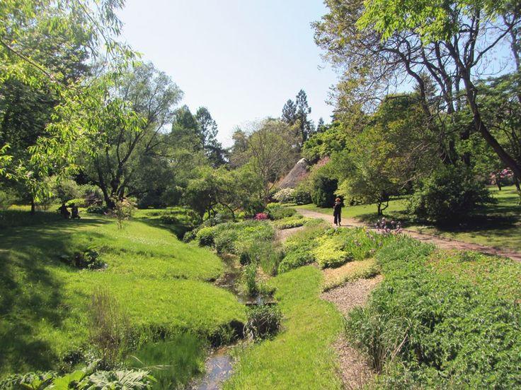 Botanischer Garten in #Rostock