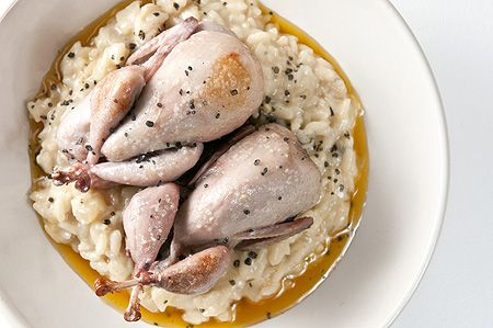 simple roast quail recipe: quail was on sale at the Asian market so we decided to give it a whirl. Brined them and roasted per the instructions. Served with risotto. Glad I tried this, but I do not care for the flavor of quail.