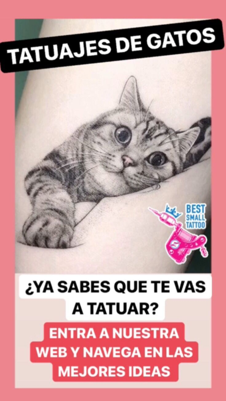 An Encourage the TATTOOS CAT IS? – #ann # # # # # # # # # # # # # #Sup # # # # # # # # #greeb # # # # # # # #greeyfriend