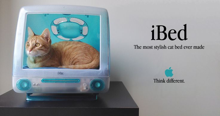 iBed, a tweeting cat bed made from an old iMac G3 – Part 1 of 2 ...
