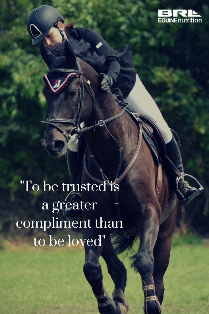 """To be trusted is a greater compliment than to be loved"" horse quote #BRLequine #earnthetrust #loveyourhorse #horsebond"