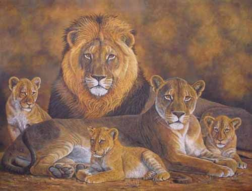 lion family pictures - get domain pictures - getdomainvids.