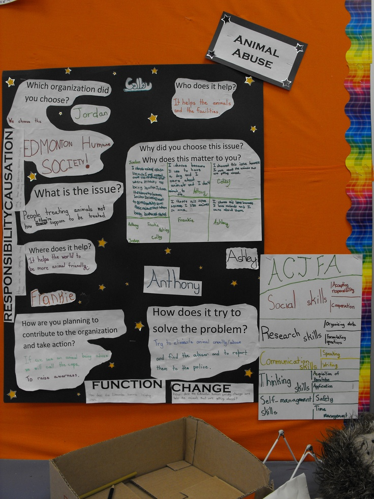 Pyp Exhibition Displays : Best images about ib pyp exhibition on pinterest take