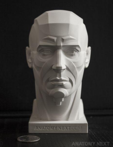 Anatomía Siguiente tienda - Cabeza masculina TOPOGRAFÍA modelo de impresión 3D