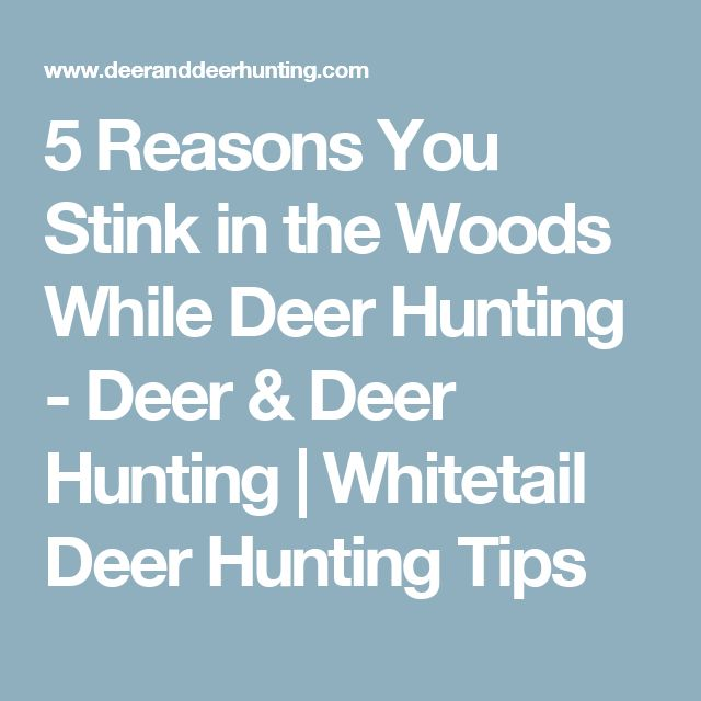 5 Reasons You Stink in the Woods While Deer Hunting - Deer & Deer Hunting | Whitetail Deer Hunting Tips