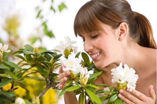 Запахи эфирных масел-дыхание природы