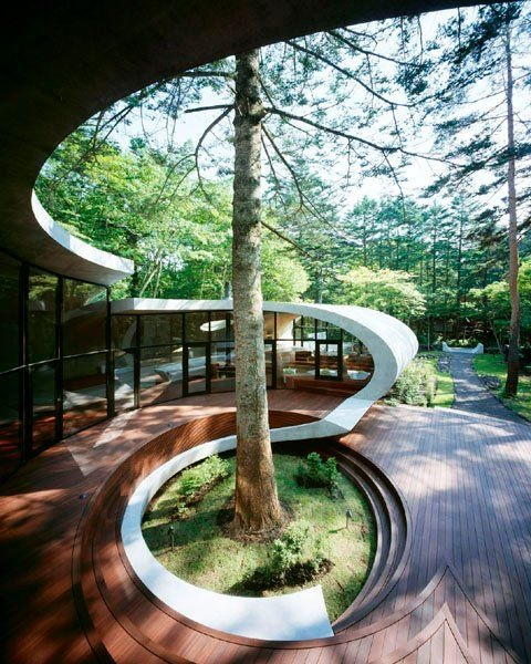 Interesting design around a tree. Good flow of curve. Not too heavy.